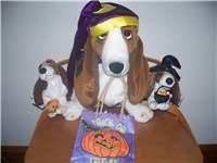 Photograph of Halloween-themed Hush Puppies plush basset hounds.
