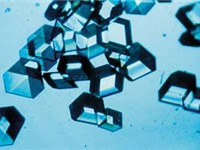 Insulin crystals.