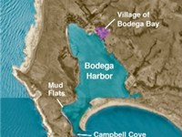 The village of Bodega Bay on Bodega Harbor