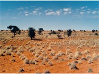 The Kalahari Desert covers up to 70% of the land surface.