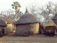 Traditional homes in south-east Burkina Faso