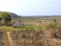Countryside near Ngaoundal in Cameroon's Adamawa Region.