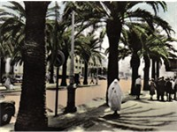 Boulevard Mohamed el Hansali in 1950s