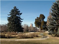 Cheesman Park started as a cemetery.