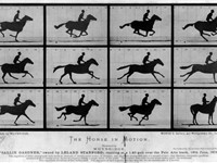 Muybridge's The Horse in Motion.