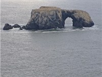 Arched Rock, visible from Goat Rock Beach, formed by wave action collapsing a portion of this sea st