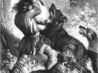 Wolf hunting with wolfhounds