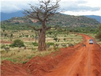 A route in Tsavo East National Park