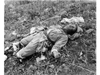 Hill 105: A PVA soldier killed fighting the 1st Marine Division, Korea, 1951.