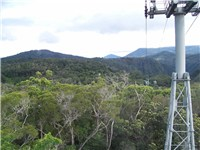 A view from the Kuranda Skyrail