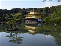 The Golden Pavilion is the best known temple in Kyoto