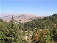 Mountain scenery in Barouk