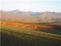 Landscape of Lesotho.