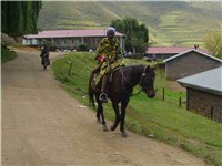 Mosotho horseman.