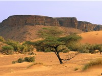 Mountains in the Adrar region; desert scenes continue to define the Mauritanian landscape.