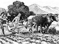 Natives utilize a primitive plow to prepare a field for planting near Mission San Diego de Alcalá.