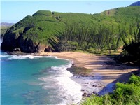 &quot;Baie des Tortues&quot; (Turtle Bay) near &quot;La roche perc e&quot; (Pierced Rock) at Bourail in New Caledonia