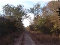 Huge untapped reserves of fertile virgin land : the Chaco, Palmar de las Islas Region