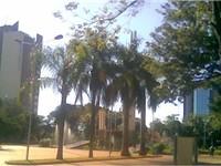 Center of Encarnaci n.