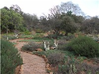 National Botanical Gardens in Pretoria