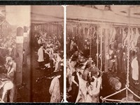 Panorama of the beef industry in 1900 by a Chicago based photographer