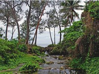 A stream on Efate island.