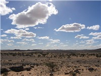 Typical landscape of Western Sahara, located in Tifariti.