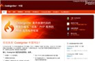 codeigniter.org.cn Homepage Screenshot