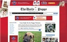 dailypuppy.com Homepage Screenshot