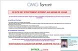 omgtorrent.com Homepage Screenshot