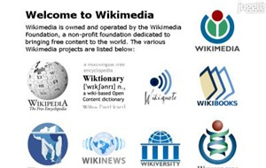 wikimedia.org