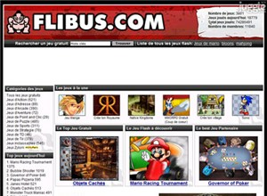 flibus.com Homepage Screenshot