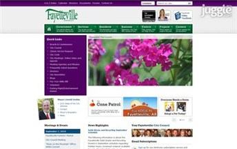 Top Arkansas Local Government Websites Homepage Screenshot