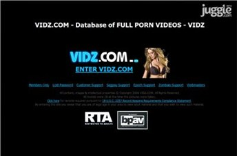 vidz.com Homepage Screenshot