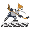 Edmonton Roadrunners Logo