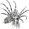 Lion Fish Logo