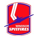 Windsor Spitfires Logo