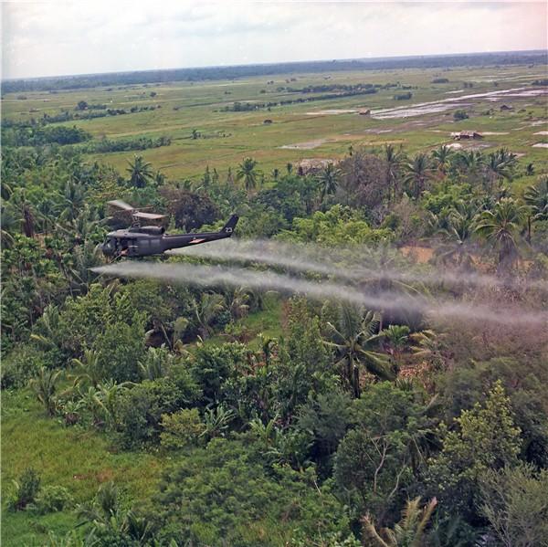 external image wg-vietnam-war-6.jpg