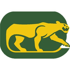 Chicago Cougars Primary Logo