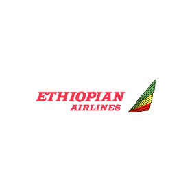 Ethiopian Airlines Logo Pictures to Pin on Pinterest ...