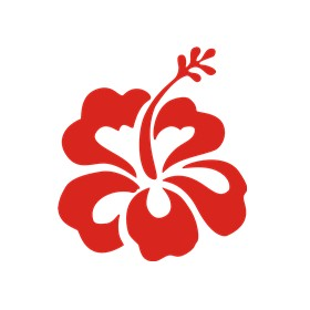 hibiscus flower logo choose logo format adobe illustrator 4 22kb
